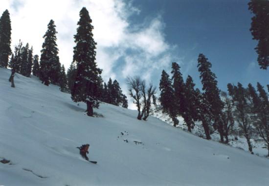На склонах Гималаев