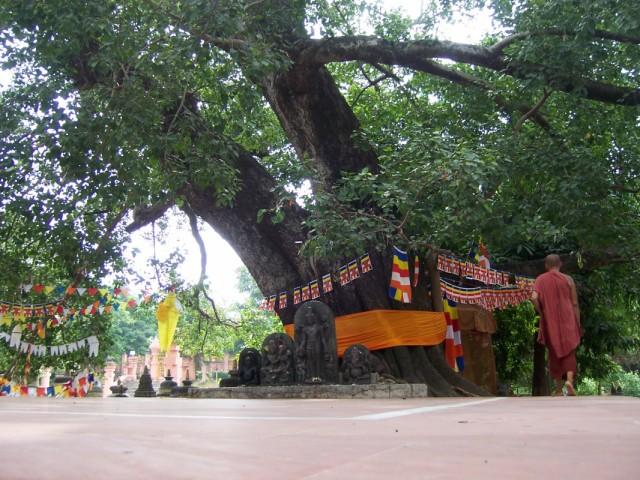 Бодхгая около Главного Храма