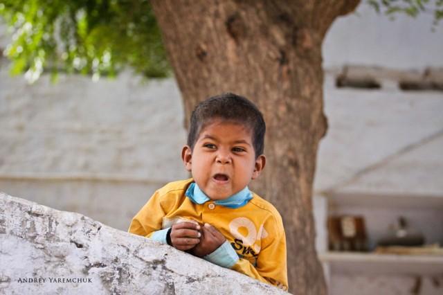 tease 2, Jaipur