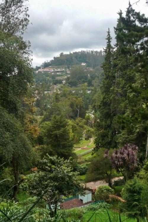 Вид на Ути из Ботанического сада