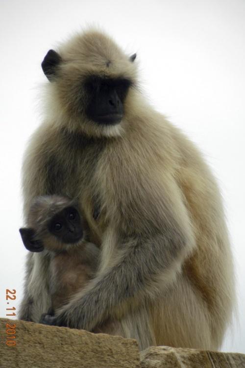 Мамочка с малышом