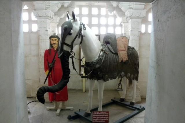 Хобот коню - чтобы боевые слоны его принимали за слоненка и не обижали