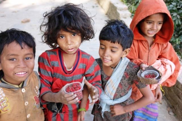 Дети, продающие волчьи ягоды.