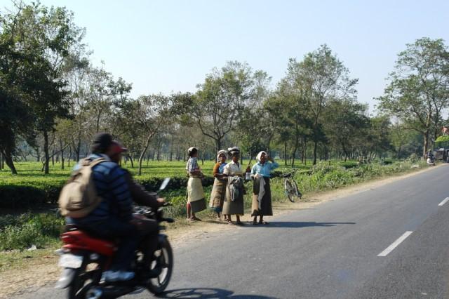 По дороге в Силигури