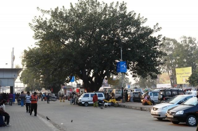 Ж/д станция New Jalpaiguri (Западная Бенгалия)_08