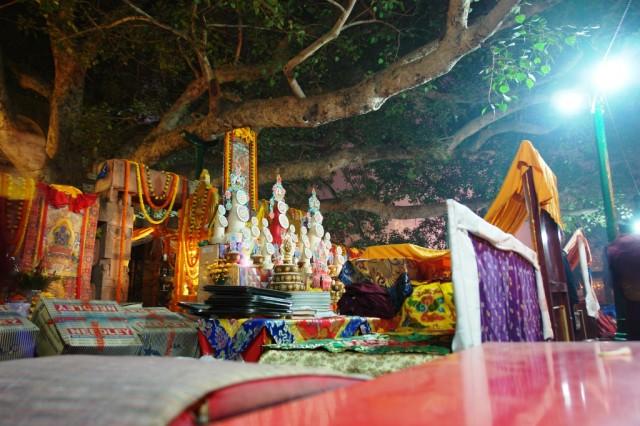 Под деревом Бодхи