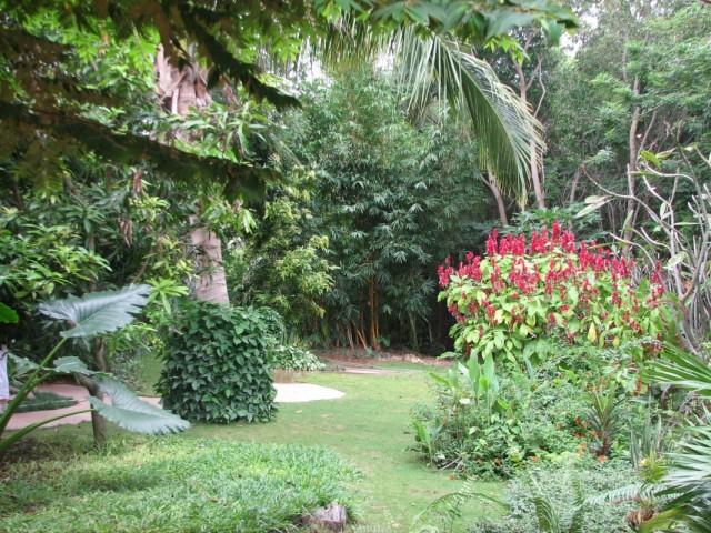 Австралийский сад Туда от ашрама можно на рикше,но мы шли пешком Сказочно - не то слово.