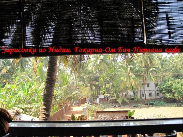 Гокарна встретила пальмами путешественников из зимы