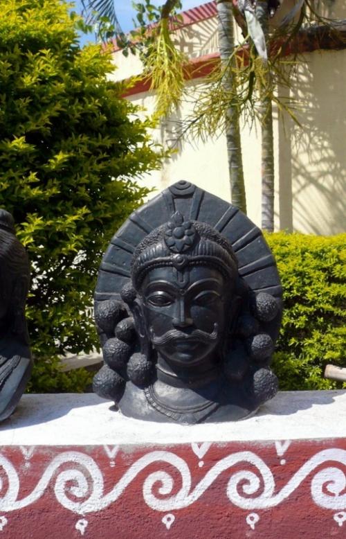 Красавец во дворе музея