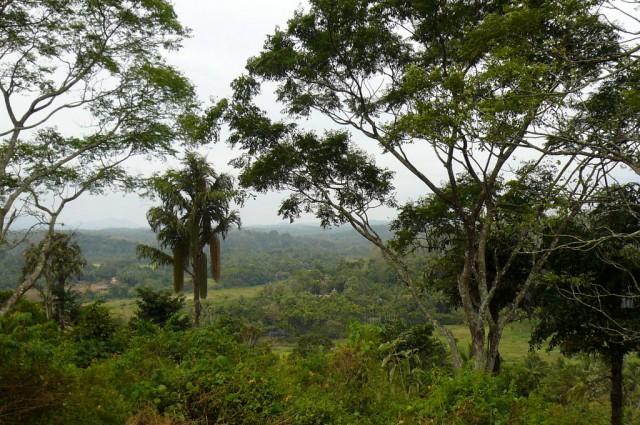 Вид от храма