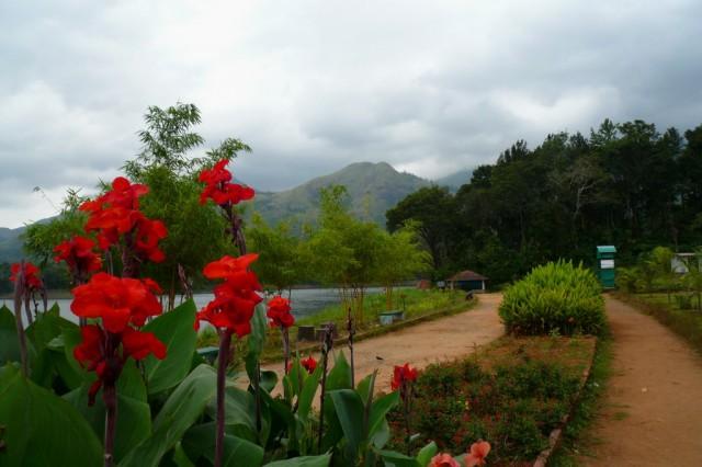 Парк возле дамбы