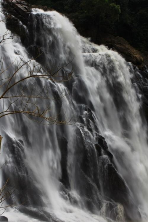 Водопад в джунглях