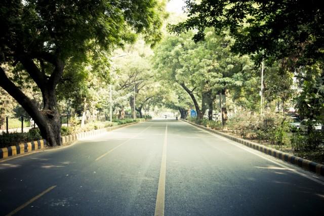 Зеленые улицы Дели