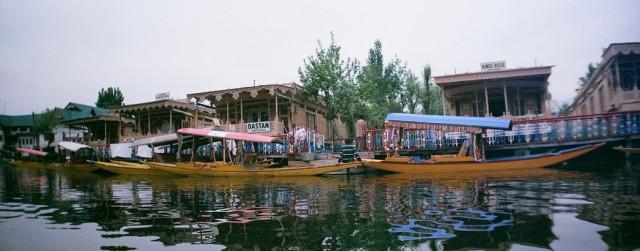 Кашмирик