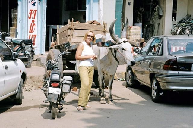 Смесь времен - буйволы и машины
