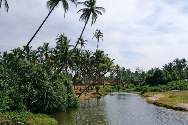 Часто встречаются устья небольших рек