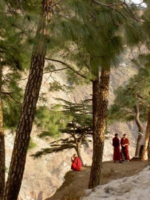 Далай-лама в горах Дхарамасалы