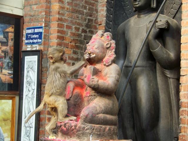 обезьянка достает кашу изо рта божества