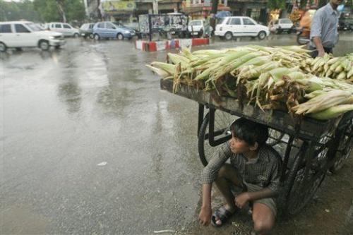 в укрытии от дождя
