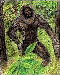 Таким может быть лесной человек из индийской Мегхалаи