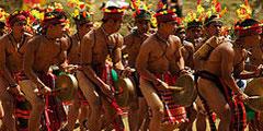 «Копы в стрингах» появятся на фестивале Panagbenga.