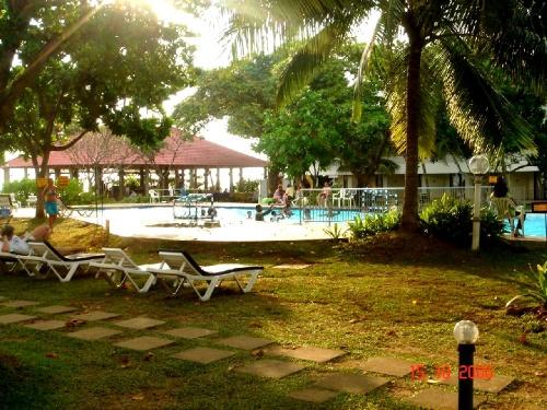 Club Palm Garden. Бассейн